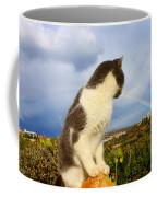 Watching The Rainbow Coffee Mug