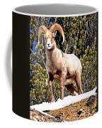Watching The Valley Coffee Mug