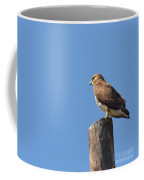 Watchtower-hawk Coffee Mug