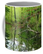 Water Bridge  Coffee Mug