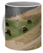 Water Buffalo Coffee Mug