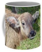 Water Buffalo Calf Coffee Mug