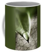 Water Drop On Green Leaf Coffee Mug
