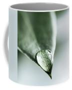 Water Drop On Leaf Coffee Mug