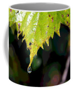 Water Droplet On Leaf Coffee Mug by Greg Thiemeyer