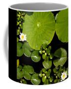 Water Drops Bristol Rhode Island Coffee Mug