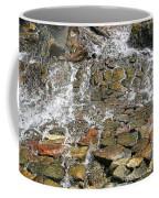 Water From A Stone Coffee Mug