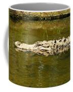 Water Gator Coffee Mug