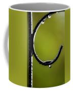 Water Ice Iron Coffee Mug