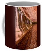 Water Is Life - Coyote Gulch - Utah Coffee Mug