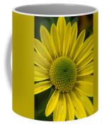 Water Kissed Yellow Chrysanthemum  Coffee Mug