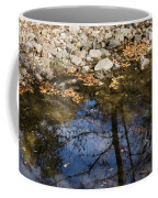 Water Leaves Stones And Branches Coffee Mug