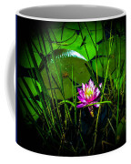 Water Lily 3 Coffee Mug