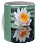 water lily 45 Water Lily with Reflection Coffee Mug