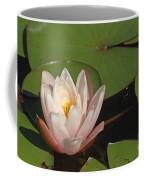Water Lily 5 Coffee Mug