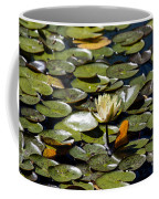 Water Lily And Bees Coffee Mug