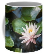 Water Lily And Lily Pads Coffee Mug