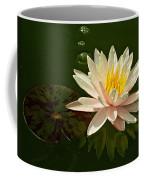 Water Lily And Pad Coffee Mug