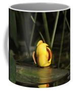 Water Lily Bud Coffee Mug