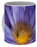 water lily from Madagascar Coffee Mug