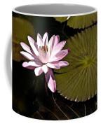 Water Lily Coffee Mug by Heiko Koehrer-Wagner