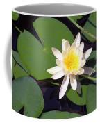 Water Lily I I I Coffee Mug