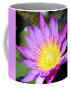 Water Lily In Purple Coffee Mug
