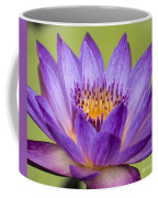 Water Lily Lindsey Woods Macro Coffee Mug