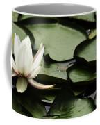Water Lily Pad Coffee Mug