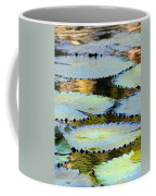 Water Lily Pads In The Morning Light Coffee Mug