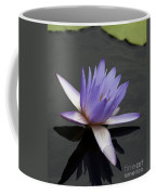 Water Lily Teri Dunn Coffee Mug