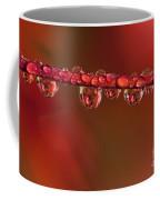 Water Line Coffee Mug