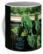 Water Plants Coffee Mug
