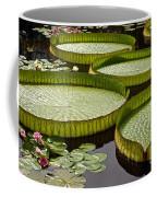 Water Platter Charm Coffee Mug