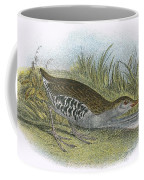Water Rail Coffee Mug