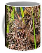 Water Snake In Hiding Coffee Mug