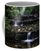 Water Steps In Fairmount Park Coffee Mug