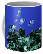 Water World One Coffee Mug
