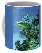 Water World Three Coffee Mug
