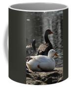 Waterbirds Coffee Mug