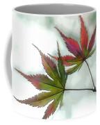 Watercolor Japanese Maple Leaves Coffee Mug