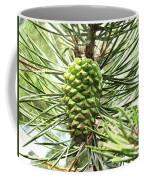 Watercolor Of Ripening Pine Cone Coffee Mug