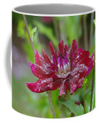 Waterdrops On Petals  Coffee Mug