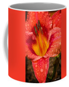 Watered Lily Coffee Mug