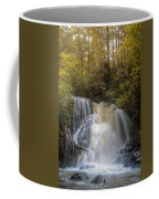 Waterfall After The Rain Coffee Mug
