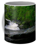 Waterfall At George W Childs Park Coffee Mug