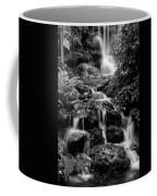 Waterfall At Rainbow Springs Coffee Mug