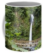 Waterfall Bridge Coffee Mug
