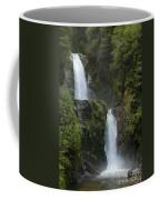 Waterfall, Chile Coffee Mug
