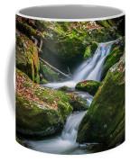 Waterfall Great Smoky Mountains  Coffee Mug